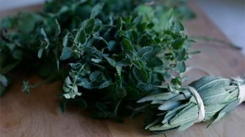 7 полезни съвета за готвене с билки