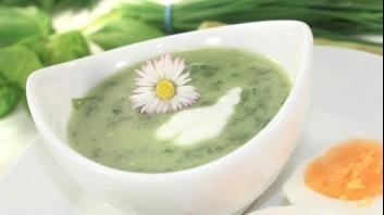 Супа с киселец